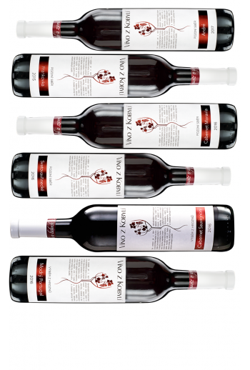 Degustační sada vín II  Červená vína